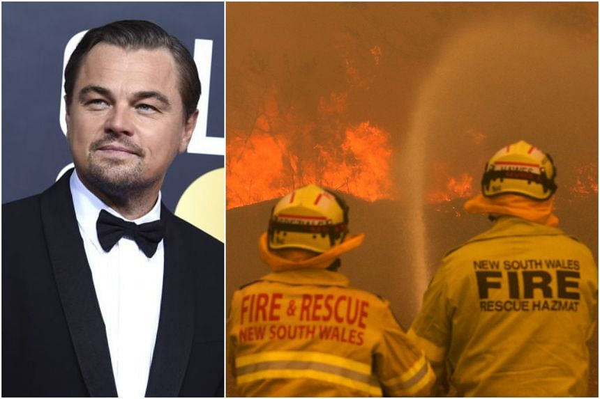 """Leonardo DiCaprio's Earth Alliance started the Australia Wildfire Fund to help with an """"international response to the catastrophic bush fires"""" currently raging in the country."""