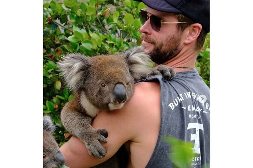 """STARS CHIP IN FOR AUSTRALIAN BUSHFIRE VICTIMS: Thor actor Chris Hemsworth (above) is donating one million dollars to help victims of the bushfires in Australia. """"Like you, I want to support the fight against the bushfires. My family and I are contrib"""