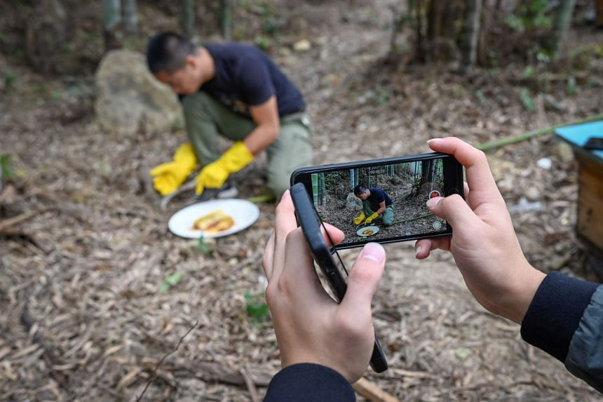Farmer Ma Gongzuo working while being filmed on a smartphone. Such videos enable Chinese consumers to see how their products are made and have helped farmers out of poverty.