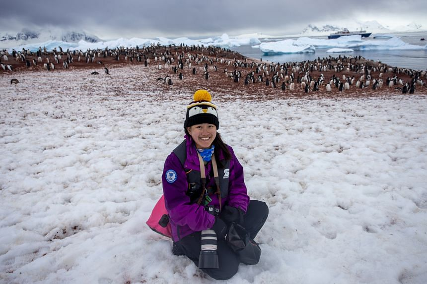 Ms Adelene Cheng with a colony of gentoo penguins at Cuverville Island.