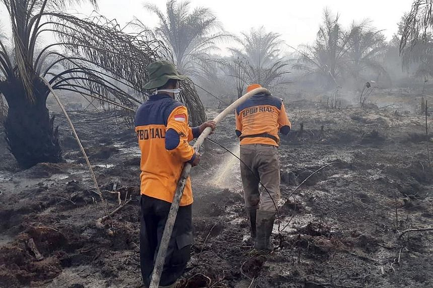 UNITED STATES: Firefighters working to control flames from a backfire in Santa Paula, California, on Nov 1 last year. PHOTO: AGENCE FRANCE-PRESSE AMAZON: A desolate burnt area of the Amazon rainforest near Porto Velho, Brazil, on Aug 26 last year. PH