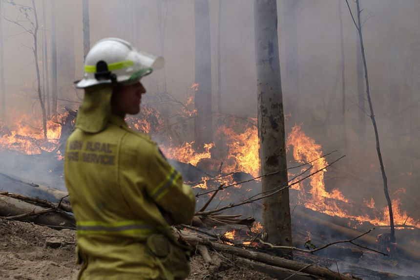 A firefighter keeps an eye on a controlled fire as they work at building a containment line at a wildfire near Bodalla, Australia on Jan 12, 2020.