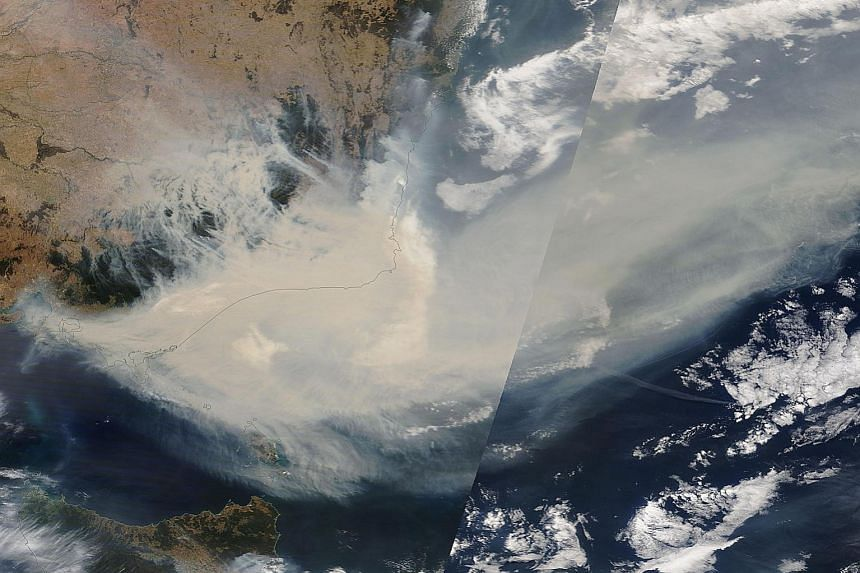 A Jan 3 satellite image showing thick smoke moving into the Tasman Sea from the Australian states of New South Wales and Victoria, where bush fires have been particularly bad. More than 11 million ha of forests and farmlands have been scorched since