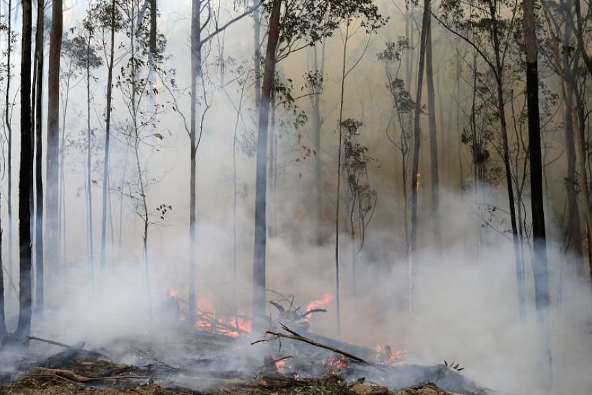 The Australian fires have burned across an area twice the size of Switzerland while claiming at least 28 lives and destroying thousands of homes.