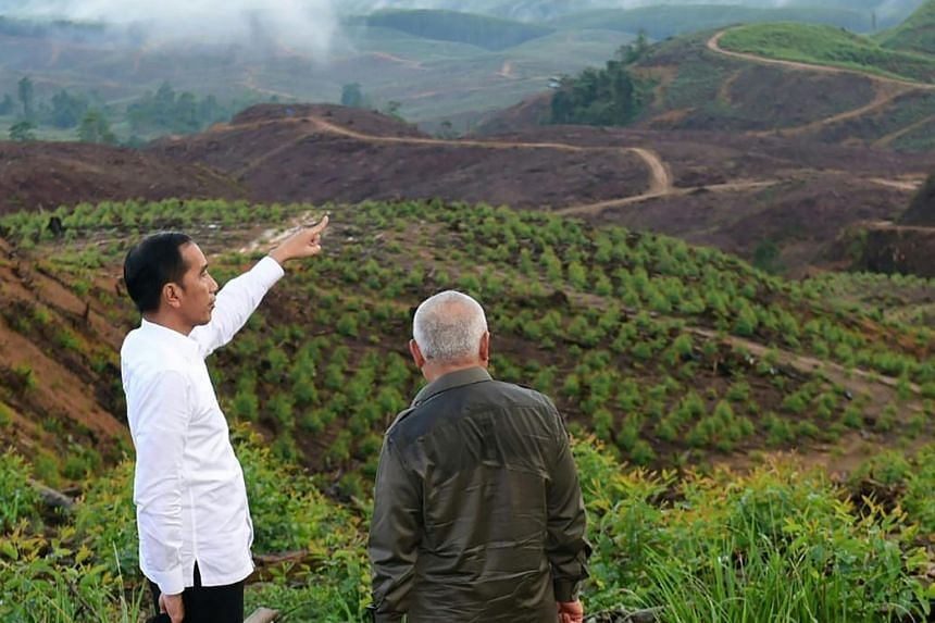 A photo taken and released on Dec 17, 2019 by the Indonesian Presidential Palace shows President Joko Widodo (left) accompanied by officials visiting North Penajam Paser district in East Kalimantan, the site of the new capital city.