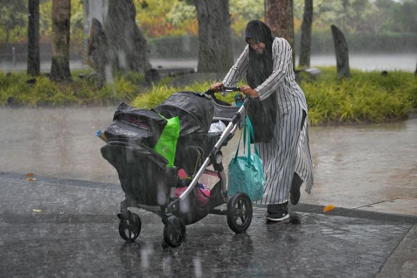 Singapore can expect more showers in the next fortnight compared with the first two weeks of the month, with thundery showers mostly in the afternoon on eight to 10 days.