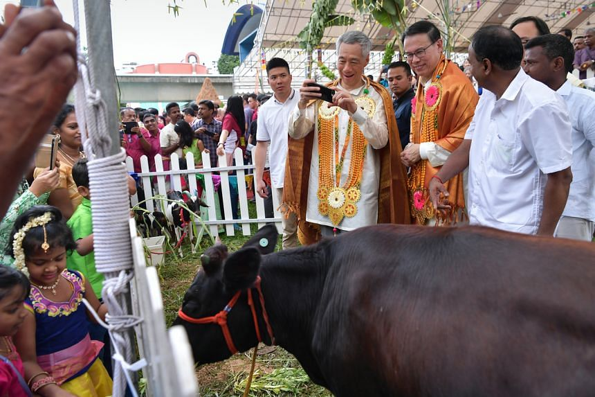 Prime Minister Lee Hsien Loong (centre), alongside Bukit Panjang SMC MP Teo Ho Pin at the annual Bukit Panjang Pongal Festival and Blood Donation Drive in Bukit Panjang on Jan 19, 2020.