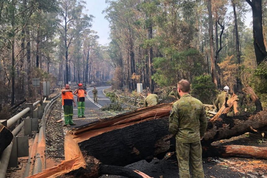Australian Army 7 Royal Australian Regiment clearing a felled tree with civilian authorities in Orbost-Mallacoota, Victoria, on Jan 10, 2020, in a photo provided by the Australian Department of Defence.