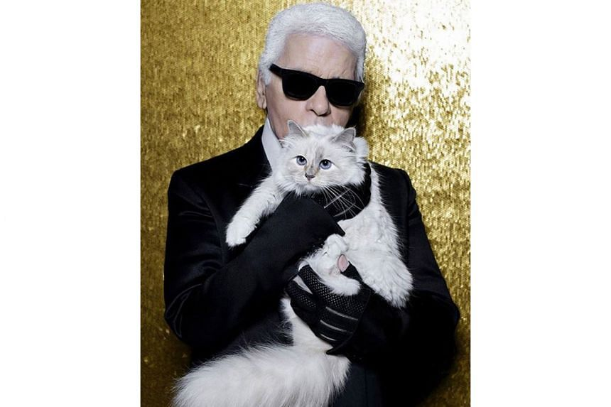 Choupette, whose owner Karl Lagerfeld died in February last year, gained a following in 2012 after her photo went viral online.