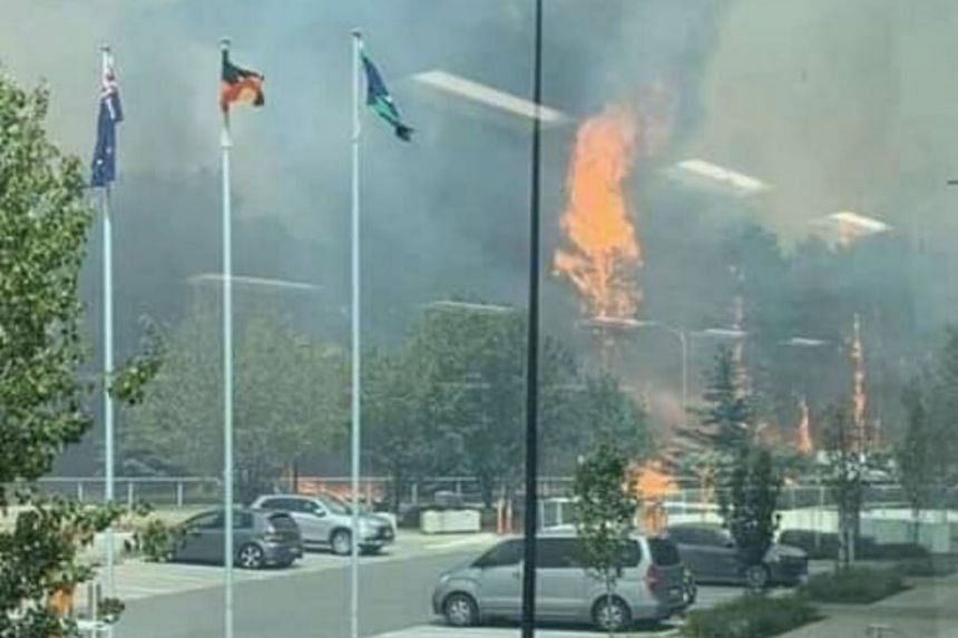 Although the terminal of Canberra airport was not evacuated, flight activities were suspended from about 9am (12pm Australia time) to 3pm to facilitate aerial firefighting.