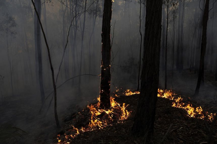 Fire creeps through a property in Australia on Jan 24, 2020.
