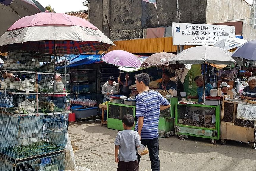 A wildlife market that sells exotic animals from snakes to bats in Jatinegara, East Jakarta. A coalition of animal rights organisations has urged President Joko Widodo to take measures so Indonesia would not become the next point of origin of a deadl