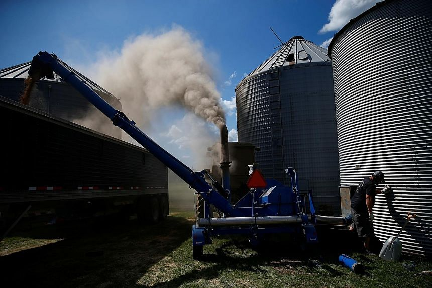 Soya beans being moved from a grain elevator to a truck to be transported in Iowa in the US last August. Some analysts had said following the phase one trade deal that China may need to roll back some of the tariffs on US goods such as soya beans and