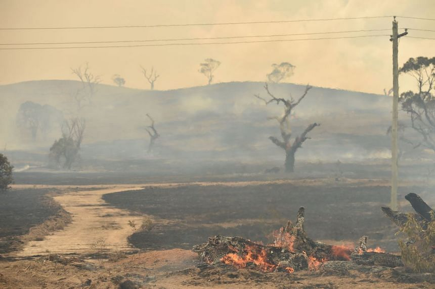 In a photo from Feb 2, 2020, a bush fire burns near the town of Bumbalong, south of Canberra.