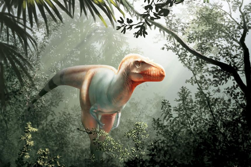 An artist's impression of a Thanatotheristes degrootorum, a 9m-long, 2.4m-tall dinosaur with razor-sharp teeth and a formidable two-tonne frame which terrorised the Alberta region some 79.5 million years ago.
