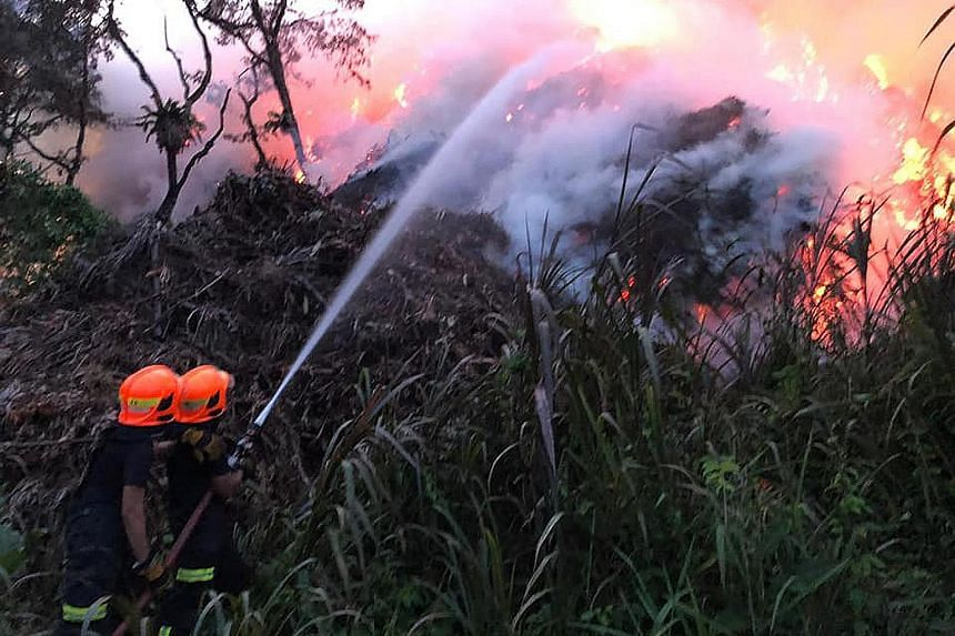 The Singapore Civil Defence Force said in a Facebook post that dry vegetation and windy conditions in Lorong Semangka near Choa Chu Kang complicated firefighting efforts. Seven water jets were used to contain the blaze, while excavators were employed