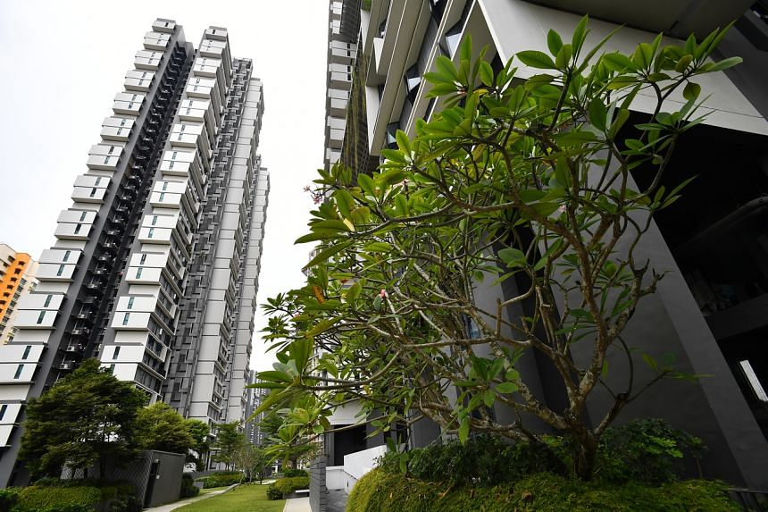 The new HDB Green Towns Programme comes on top of the HDB's existing efforts to inject more integrated greenery in new housing estates to create a liveable and sustainable environment for residents.