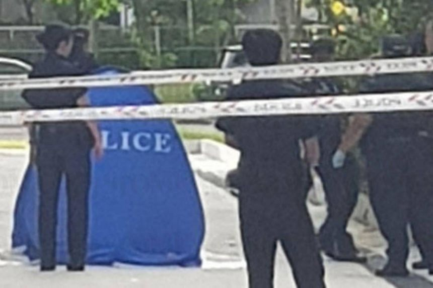 The boy was found lying motionless at the foot of the block and was pronounced dead at the scene.