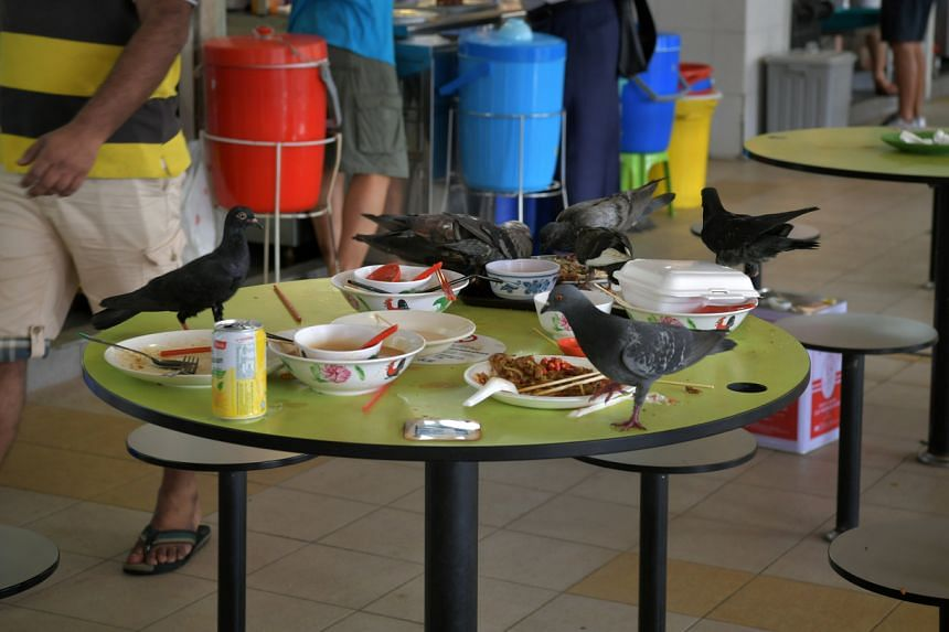 In a photo from Jan 5, 2017, pigeons feed on leftover food on a table at Tekka Market in Little India.
