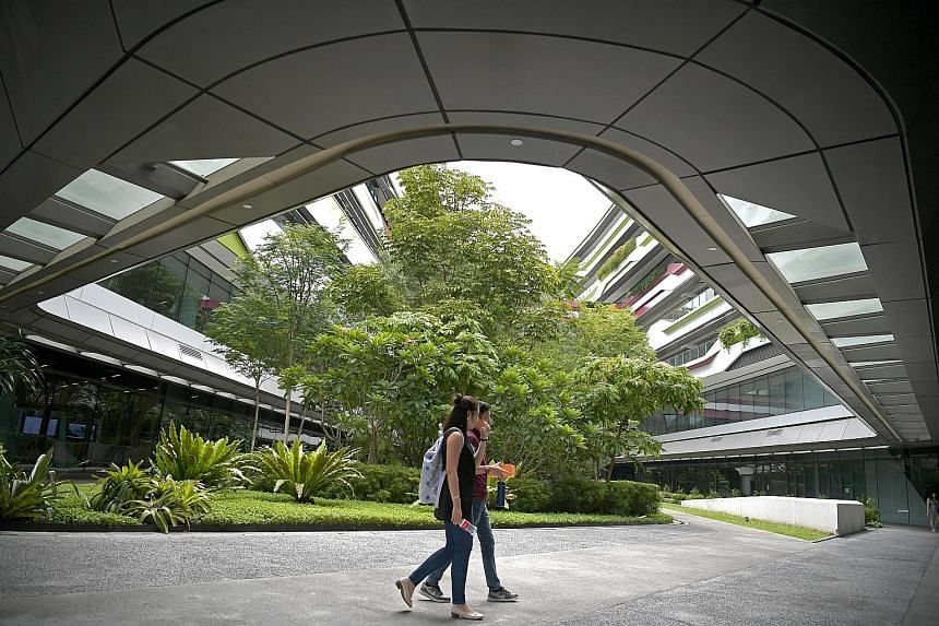 The Singapore University of Technology and Design is launching a new undergraduate degree this year in design and artificial intelligence.