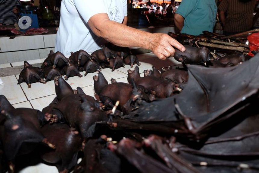 A vendor selling bats at the Tomohon Extreme Meat market on Sulawesi island in Indonesia on Feb 8, 2020, despite a government request to take them off the menu over fears of a link to the deadly coronavirus.