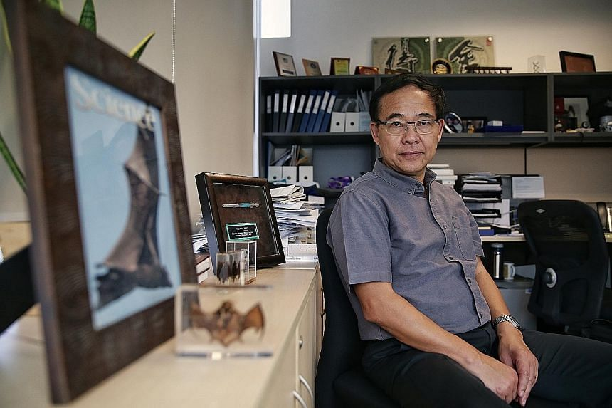 """A couple of hundred people in Singapore were infected with Sars in 2003 and this """"shadow of Sars"""", says Professor Wang Linfa of Duke-NUS Medical School, gives the Republic a problem in testing for Covid-19 as the two coronaviruses are 80 per cent sim"""