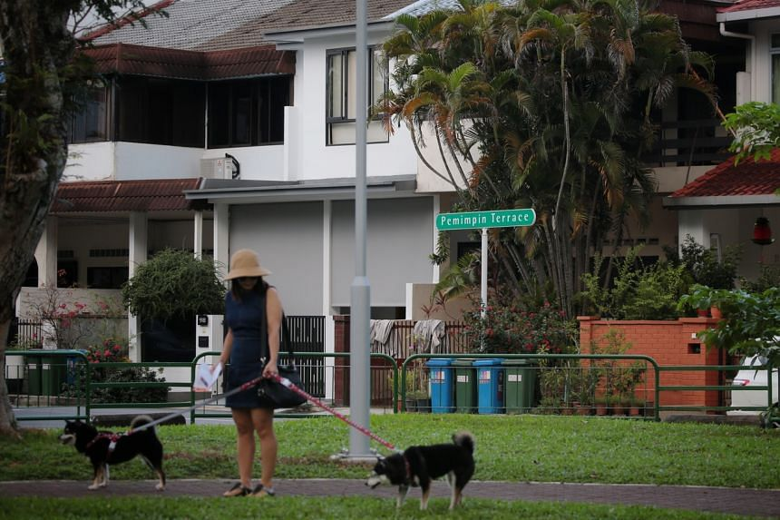 A woman walks her dogs at a park around Pemimpin Place Playground on Oct 25, 2019.