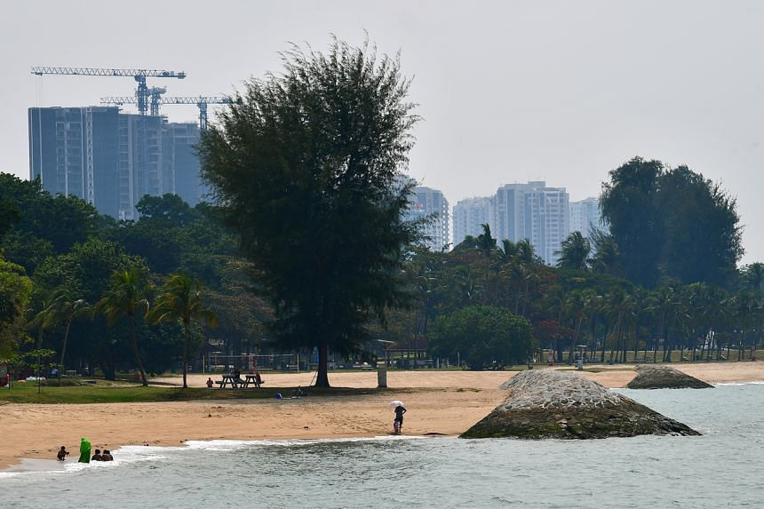 National water agency PUB will work with other government agencies and relevant parties to coordinate policies to help ensure better decisions on land-use, development and activities to safeguard the coastline from flooding.
