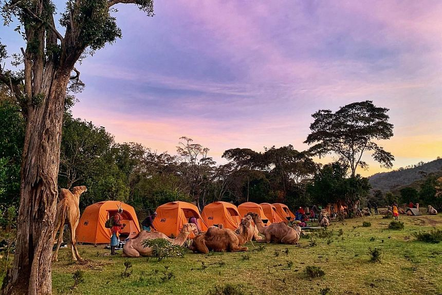 The campsite during sunset.