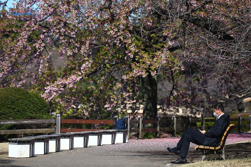 A visitor wearing a protective face mask rests under early flowering Kanzakura cherry blossoms at Shinjuku Gyoen National Garden in Tokyo, Japan, on March 11, 2020.