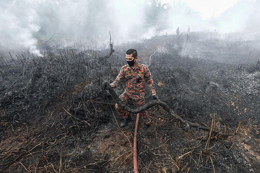 A firefighter holding a 3m-long carcass of a snake found after a peatland fire was extinguished at Kampung Matang Merbau in Taiping, Malaysia, in September. As the world tries to cap the amount of carbon used, much attention is being given to nature-