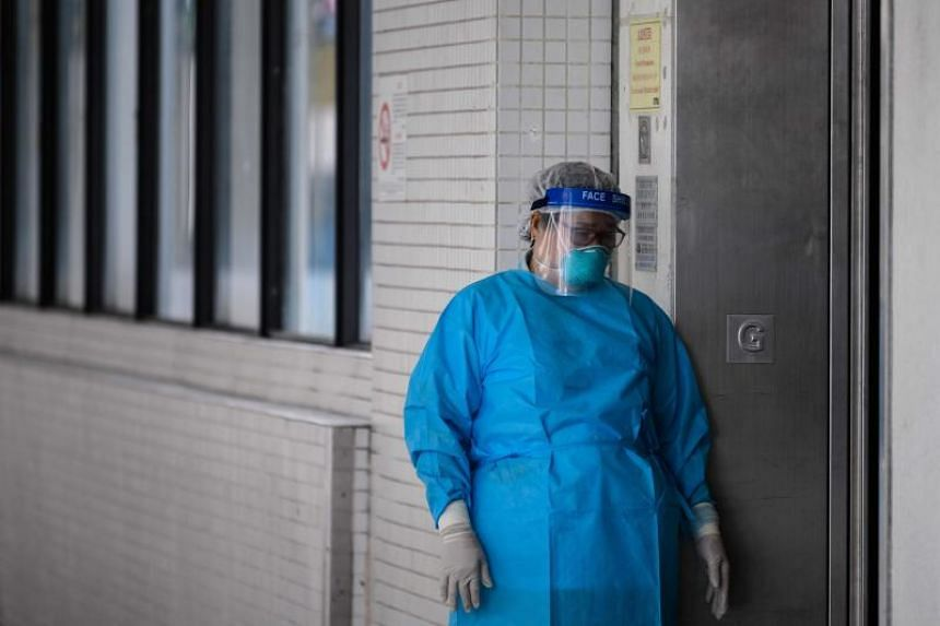 A medical worker in a hospital in Hong Kong on Feb 4, 2020. The World Organisation for Animal Health has cautioned that there is no evidence of pets transmitting the virus to humans.