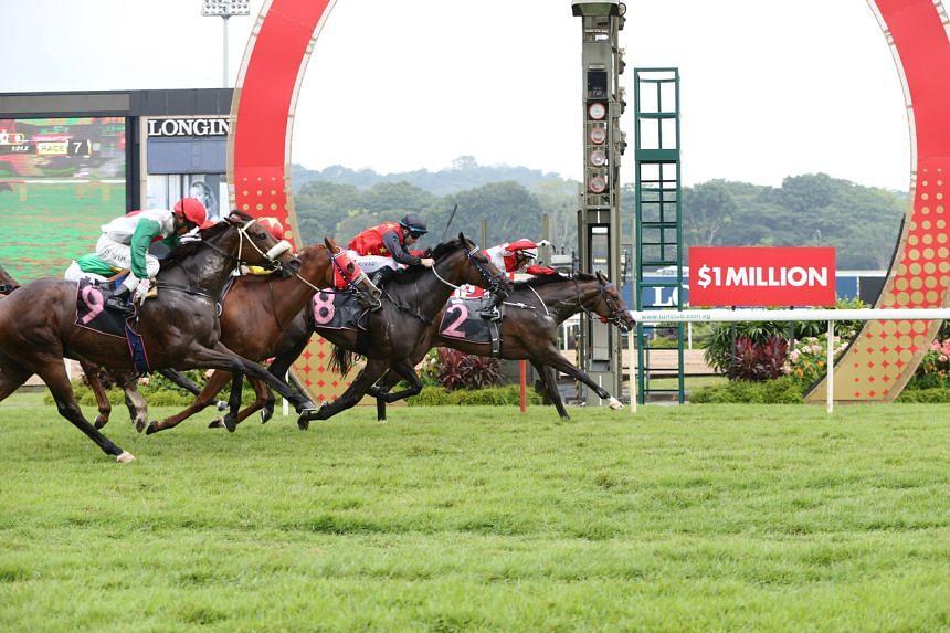 coney island singapore horse betting