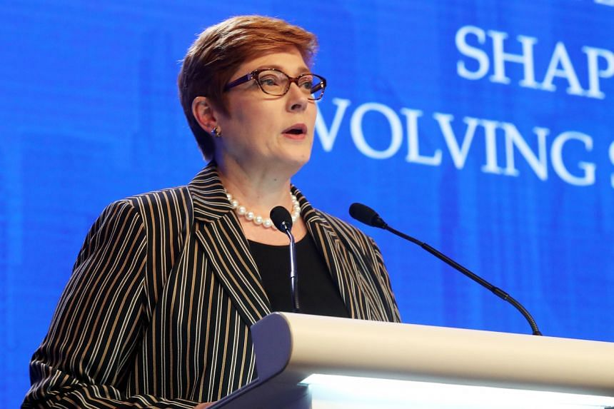 Australia will also charter commercial flights to bring home hundreds of its citizens stranded in South America, Foreign Minister Marise Payne said
