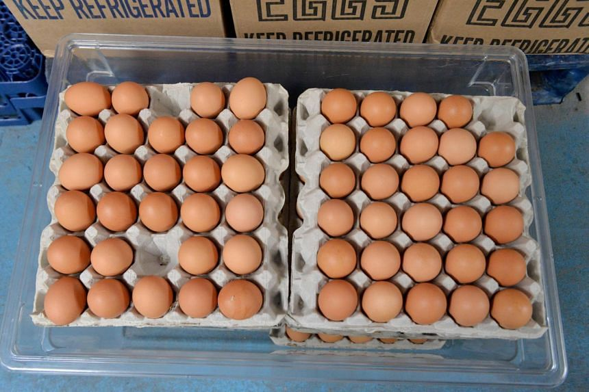 """Wholesale prices of """"Midwest large"""" eggs hit an all-time high of US$3.09 (S$4.42) a dozen, triple their level in early March."""