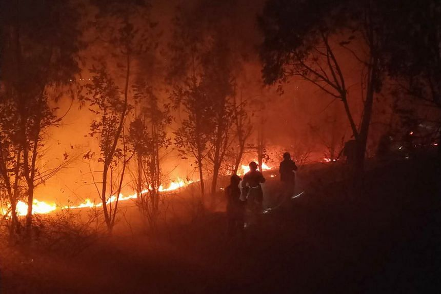 19 dead in southwest China forest fire