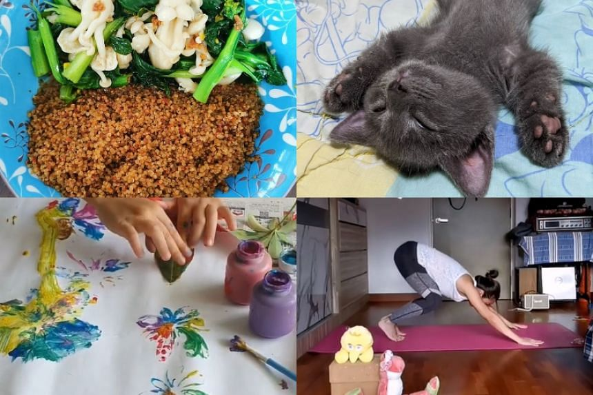 ST readers have kept busy with finger painting, cooking and doing stretches with their pets among other things.