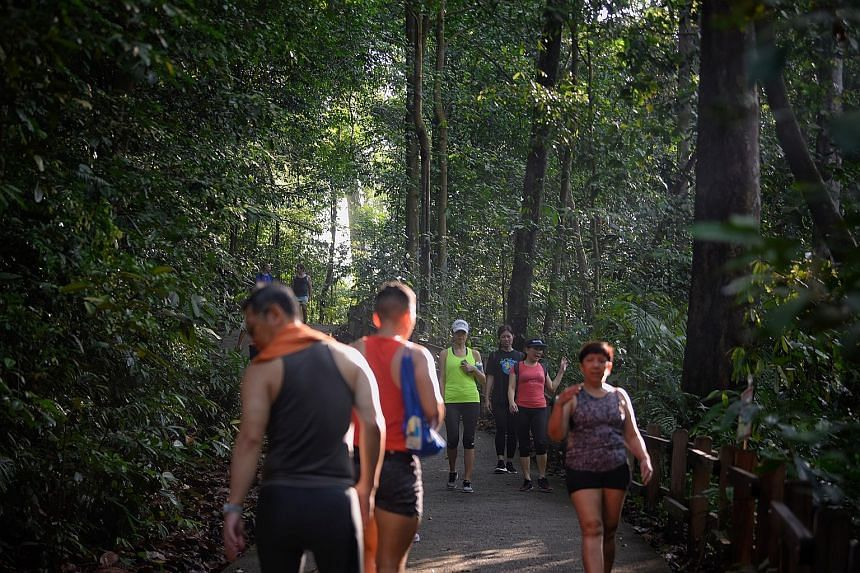 People at Bukit Timah Nature Reserve yesterday. Enforcement efforts are being stepped up against those who continue to flout safe distancing measures.