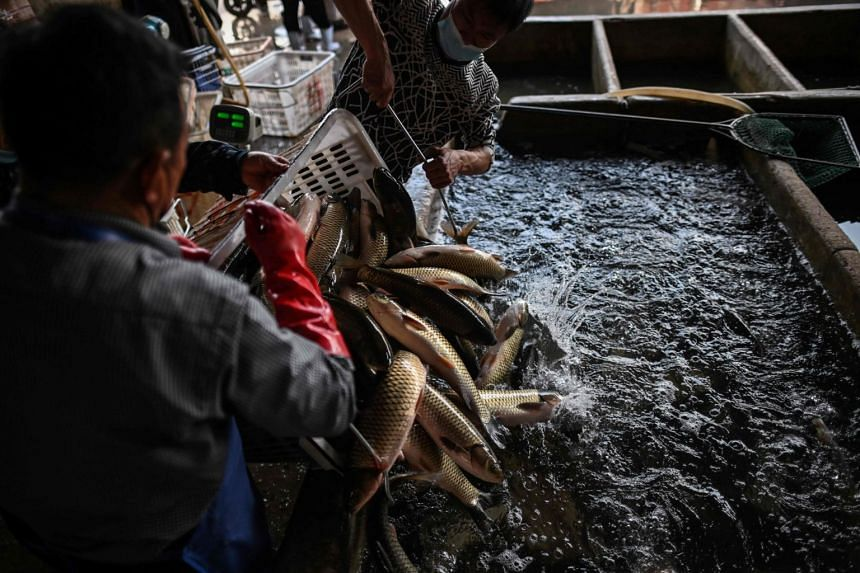 Shut down during the lengthy quarantine that sealed off Wuhan until April 8, the city's markets are now fighting for survival as customers have not been rushing back.
