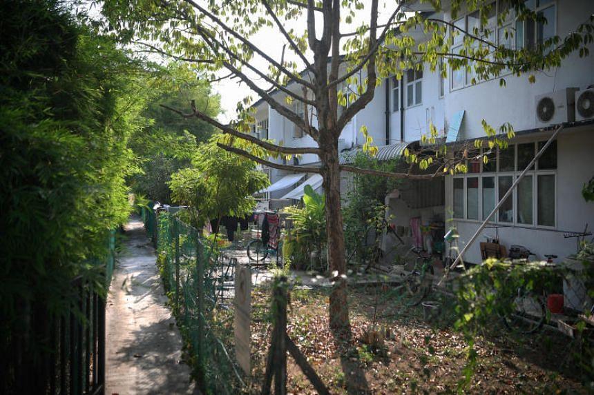 The Jalan Binjai estate in Katong as seen on Oct 13,  2019.