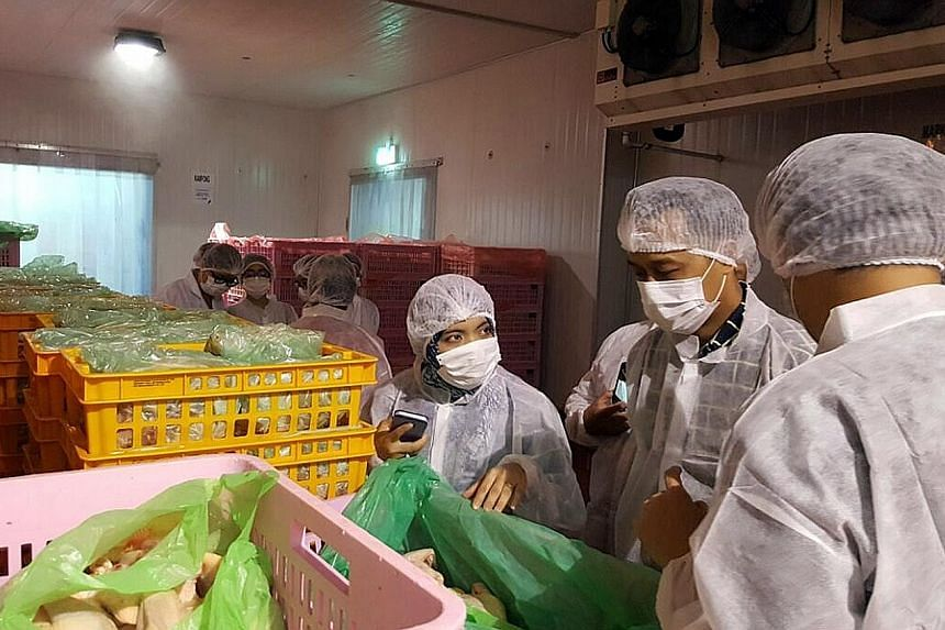 Muis' Halal Certification Strategic Unit officers looking at the processes of a halal chicken slaughtering centre. Muis said key decisions on halal certification are not made by one person, but by an independent panel. PHOTO: MUIS
