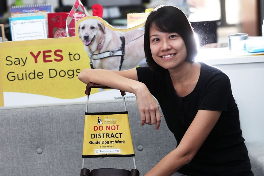 Ms Christina Teng relocated her family to Melbourne, Australia, to undergo training for two years to be a Guide Dog Mobility Instructor. During training, she learnt how to use a white cane, among other skills.
