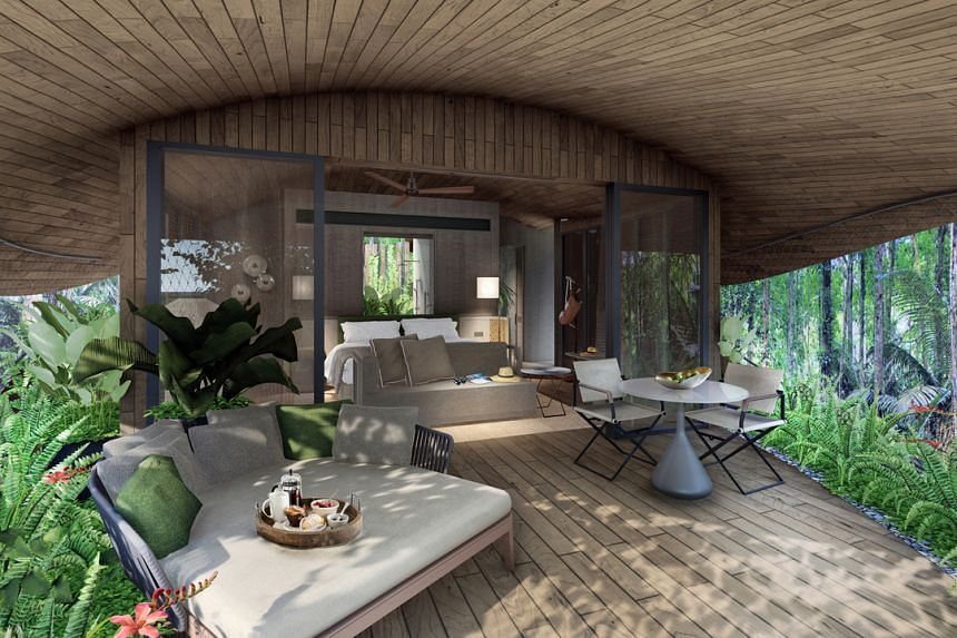 """An artist's impression of the inside of a """"treehouse"""" at the future Mandai eco-resort."""