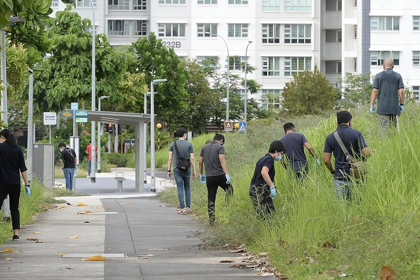Police officers (above) combing the vegetated area near the scene of Sunday's attack on Mr Tay Rui Hao (left) in Punggol Field on Monday. Mr Tay's father reportedly said his son had texted him earlier in the day to tell him he was heading out for a r
