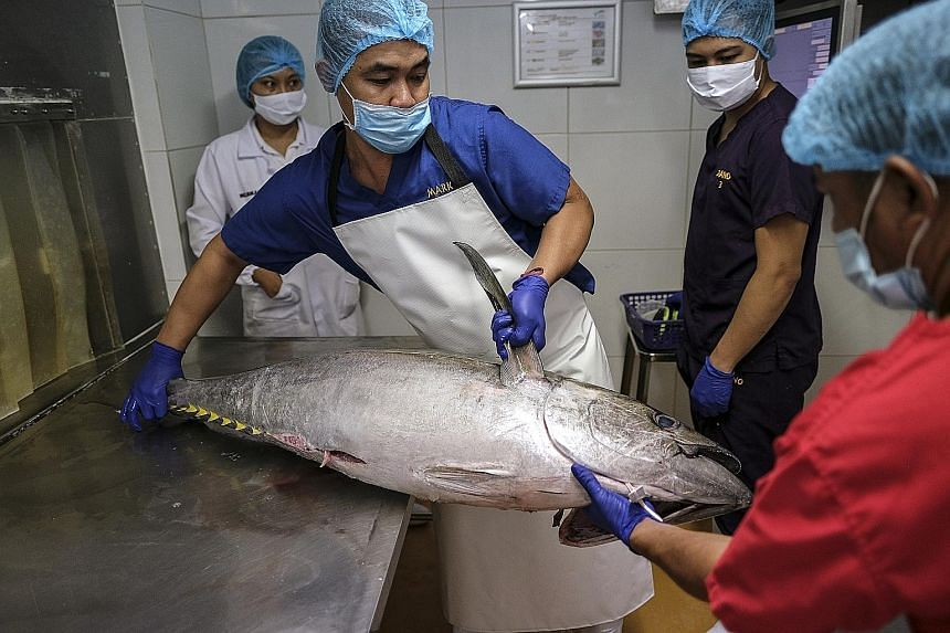 Workers handling a tuna fish in the Meliomar processing plant in Manila yesterday. The Philippine government projects the economy to shrink by 2 per cent to 3.4 per cent this year in the wake of the pandemic.