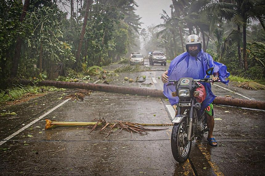 A motorcyclist braving strong winds and rain while travelling on a highway in Can-avid town in central Philippines yesterday. PHOTO: AGENCE FRANCE-PRESSE