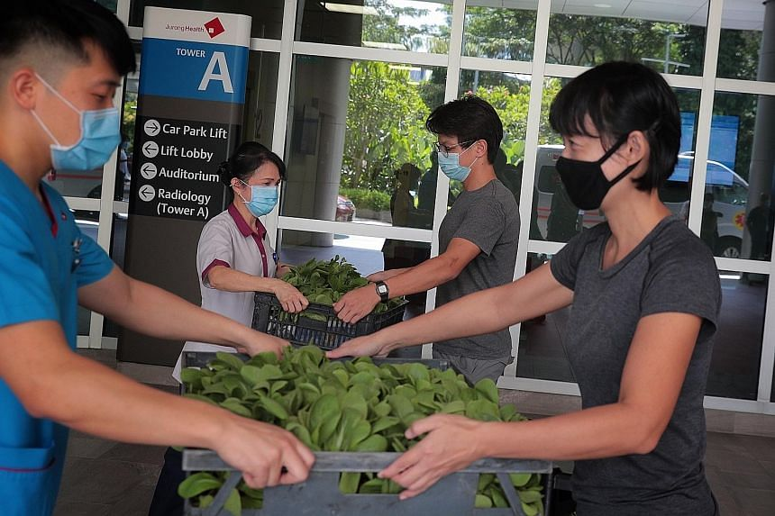 (From far right) Ms Tan Kor Hoon and Mr Chee Zhi Kin of City Sprouts, an urban farming social enterprise, donating vegetables to Ng Teng Fong General Hospital housekeeping supervisor Loo Siew Chein and senior staff nurse Glen Li at the hospital yeste