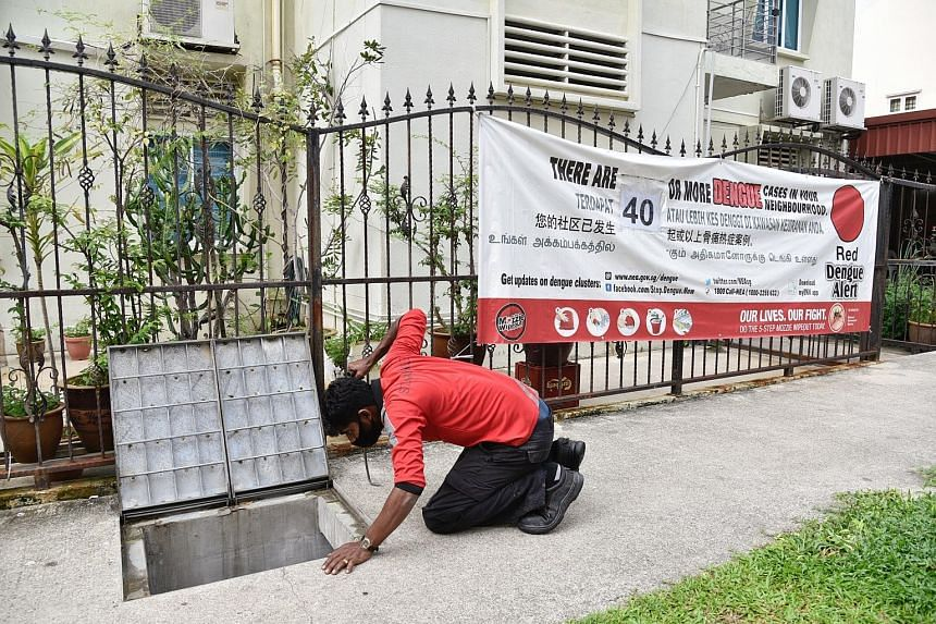 Checks are still made during the circuit breaker to eliminate potential mosquito breeding sites, such as this drain in Lorong 24 Geylang.