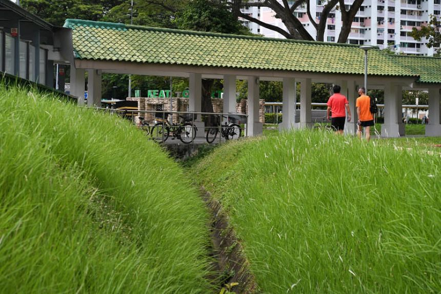 People walking past overgrown grass at Toa Payoh Lorong 6 on May 18, 2020.