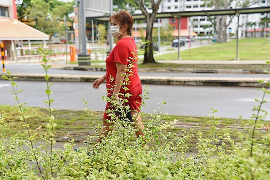 Overgrown grass along Toa Payoh Lorong 6. The National Parks Board said operations such as preventive tree pruning and grass cutting for vector control are still ongoing.